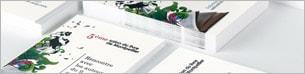Large choix de cartes et cartes de visite personnalisés à imprimer